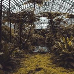 Les serres urbaines bioclimatiques : vivre dans un jardin au coeur de la ville