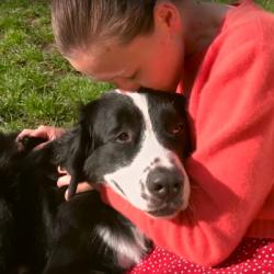 La fondation Frédéric Gaillanne: une école pour les chiens-guides d'enfants déficients visuels