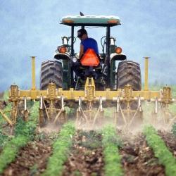 Coronavirus : aidons les agriculteurs